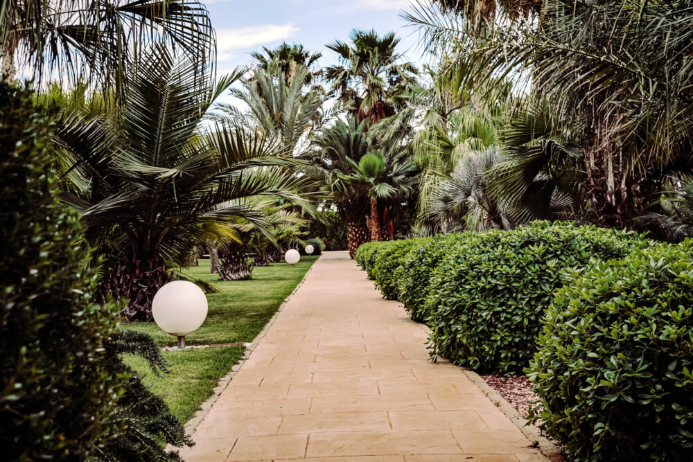 Gepflegter Garten auf Mallorca